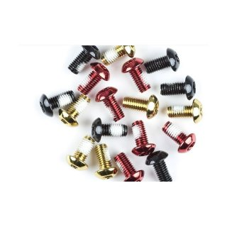 DARTMOOR DISC ROTOR SCREWS STEEL, 6PCS